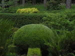 Onderhoud Tuinen De Rynck